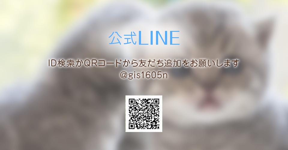 0:LINE@